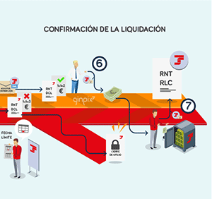 confirmacion_sistema_liquidacion_directa
